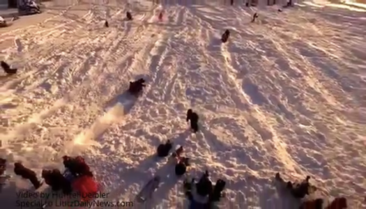 Drone Video Showcases Lititz Sledding Hill after Blizzard